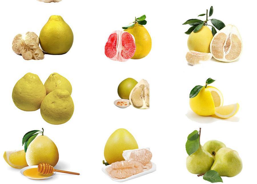 柚子简笔画大全大图
